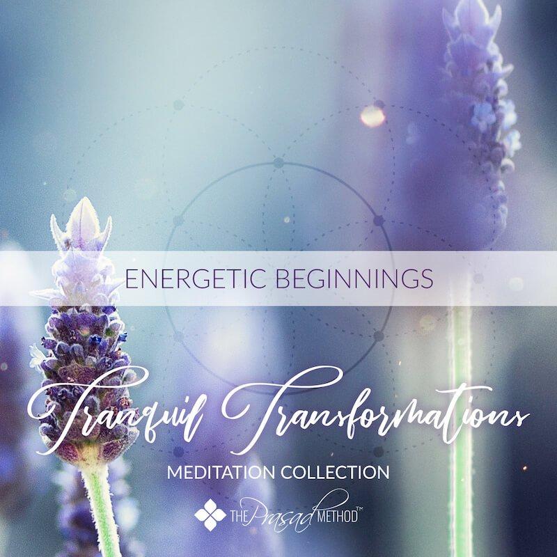 Energetic Beginnings - Dr. Asha Prasad